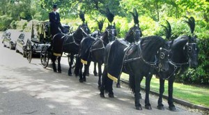 Black Horse Hearse from Supreme carrriages