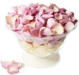Rose Petals from rosepetalshop.co.uk
